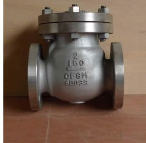 Flanged CF8/CF8m Swing Check Valve (H44H) pictures & photos