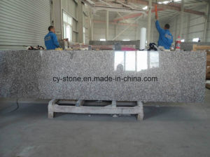 Cheap High Polished G664 Granite Kitchen Countertop pictures & photos