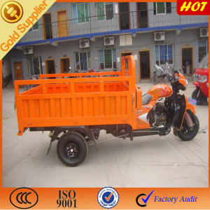 Three Wheeled Motorycle for Open Cargo pictures & photos