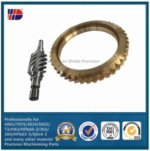 Worm Gear Manufactures Gear Manufacturing Worm Shaft and Worm Gear pictures & photos