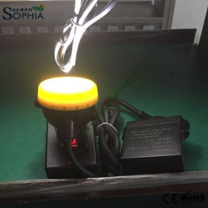 New CREE LED Working Light, Work Lamp, Cap Lamp, Headlight