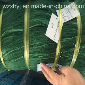 0.45mm*76mmsq*80md Nylon Monofilament Fishing Net pictures & photos