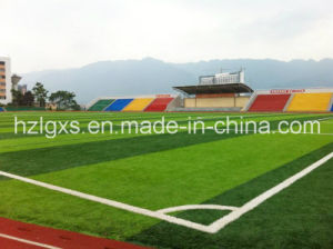 Football Field Synthetic Grass with SGS CE pictures & photos