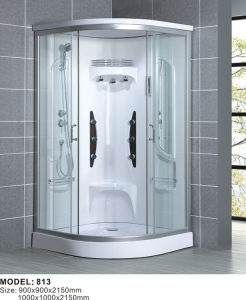 European USA Very Like Type Design Shower Room