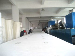 Spray Booth Ceiling Filter Cotton pictures & photos