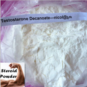 Testosterone Decanoate Powder Testosterone Decanoate Testosterone Decanoate pictures & photos