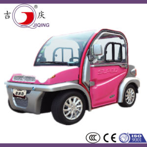 Electric Passenger Vehicle with 2 Seats pictures & photos
