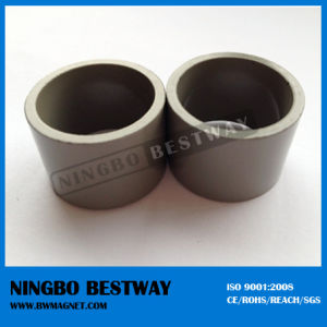Neodymium Magnet Small Ring Magnet pictures & photos