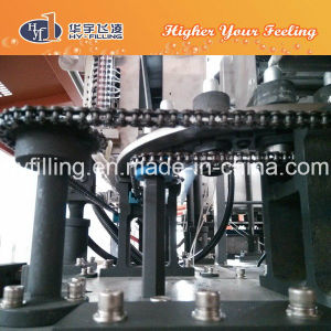 Stretch Blow Moulding Machine for Pet Bottles pictures & photos