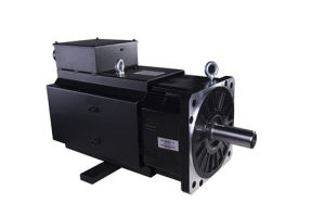 Permanent Magnet AC Servo Motor pictures & photos