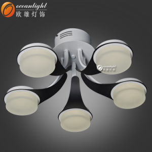 Hanging Ceiling Lamp Cover Ceiling Light Remote Control Ceiling Light Fixture Parts (OM66107-5) pictures & photos