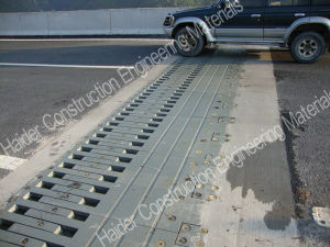 New Finger Expansion Joint Made in China pictures & photos
