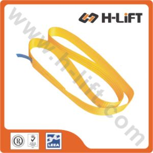 2t Polyester Endless Webbing Sling / Lifting Sling / One Way Sling pictures & photos