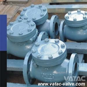 Bonnet Bolted Cast Iron RF Flange Marine Check Valve pictures & photos