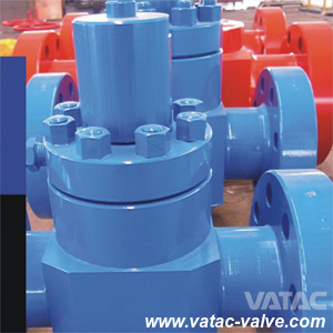 API 6A Cast Steel RF/Rtj Flange Check Valve pictures & photos