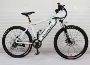 Electric Bike pictures & photos