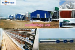 Poultry Equipment with House Construction for One-Stop Service pictures & photos