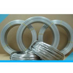 Steel Wire Coil Swrh 52b 62A/62b 67b 72A 72b 82A 82b
