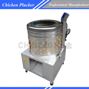 Full Automatic Stainless Steel Electric Chicken Pluckers for Sale pictures & photos