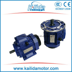 Three Phase Aluminium Housing Electromotor pictures & photos