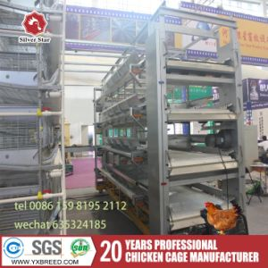 Chicken Layer Storage Cage by Full Automatic pictures & photos