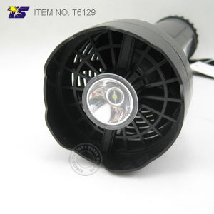 BBQ Fan with LED Flashlight and Working Light (T6129) pictures & photos