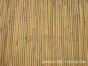 Bamboo Cane Fence Bamboo Fencing