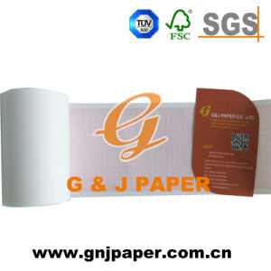 Better Price Roll Size EKG/ECG Paper in Carton Packing pictures & photos