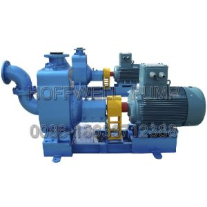 Series Self-Priming Cemtrifugal Oil Pump pictures & photos