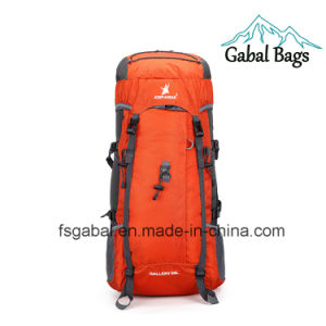 Professional Waterproof Nylon Outdoor Hiking Sport Travel Backpack Bag pictures & photos