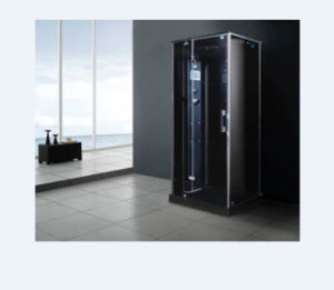 Profound Color Rectangle Portable Steamroom (M-8277) pictures & photos
