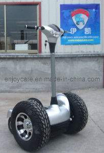 Segway Copy, Thinking Car, Electric Chariot (EC25) pictures & photos