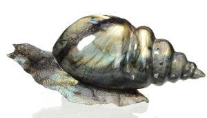 Natural Labradorite Carved Snail Sculpture Home Decoration #Aj15