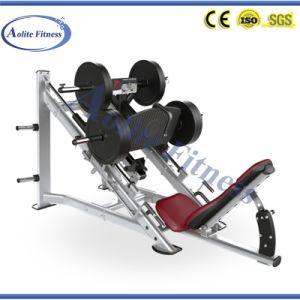Good Price Hammer Strength Gym Leg Press pictures & photos