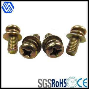 Cross Recessed Round Head Screw with Washers pictures & photos