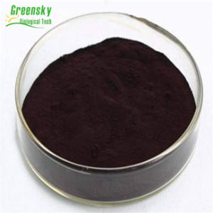 Greensky Good Quality Herb Extract Bilberry Extract pictures & photos