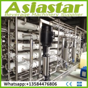 Industrial Purified Water Reverse Osmosis Treatment System pictures & photos