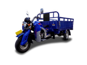 Kingstar 300cc Tricycle pictures & photos