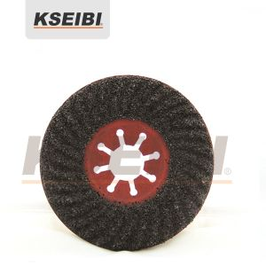 Kseibi Abrasive Silicone Carbide Semi-Flexible Disc for Stone pictures & photos