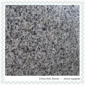 Granite Building Material Tile (G640) pictures & photos