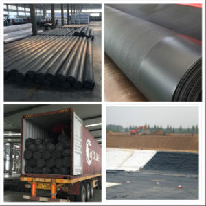 100% PE Virgin Material Textured HDPE Geomembrane for Landfill pictures & photos