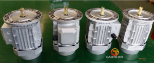 Three Phase Induction Motor (Cast Aluminum Frame, 1/5-20HP) pictures & photos