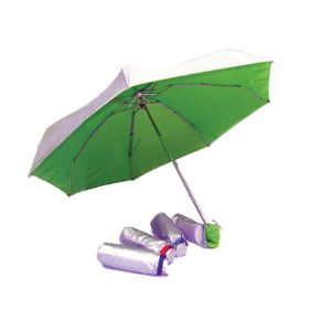 5 Fold Mini Umbrellas (KZD5022)