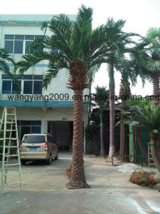 Outdoor Large Decorative Plastic Artificial Date Palm Tree pictures & photos
