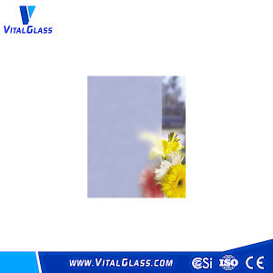 Safety Acid Etched Glass for Your Door pictures & photos