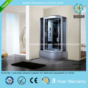 5mm Grey Glass Corner Steam/Sauna Massage Shower Cabin (BLS-9846 GREY) pictures & photos