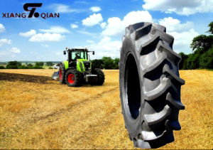 Deep R2 Pattern 14.9-24 Agriculture Tires and Tubes pictures & photos