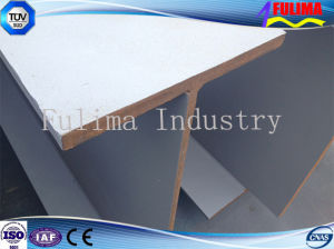 Welded Fabricated H Beam for Light Steel Structure (FLM-HT-001) pictures & photos