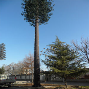Communication Mast Palm Tree Camouflage Tower Antenna Tower pictures & photos