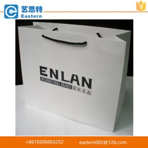 Customized Printed Mint Paper Bag pictures & photos